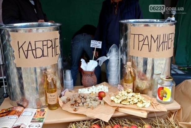 В Болграде Одесской области состоялся международный винный фестиваль, фото-7