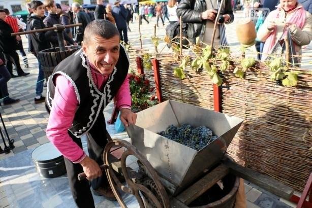 В Болграде Одесской области состоялся международный винный фестиваль, фото-16