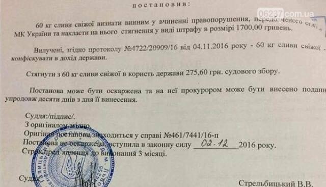 Во Львове судья оштрафовал 60 кг слив, фото-1