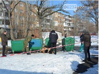 В Николаеве в мусорном баке нашли мертвого младенца, фото-1