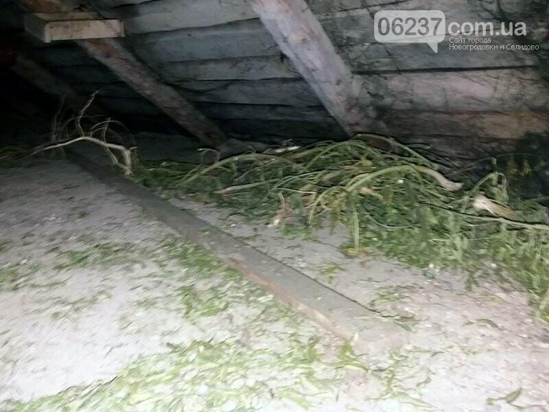 Селидівські правоохоронці, приїхавши за викликом на сімейну сварку, знайшли «наркотичну схованку» дебошира, фото-3