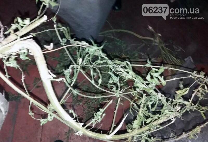 Селидівські правоохоронці, приїхавши за викликом на сімейну сварку, знайшли «наркотичну схованку» дебошира, фото-2