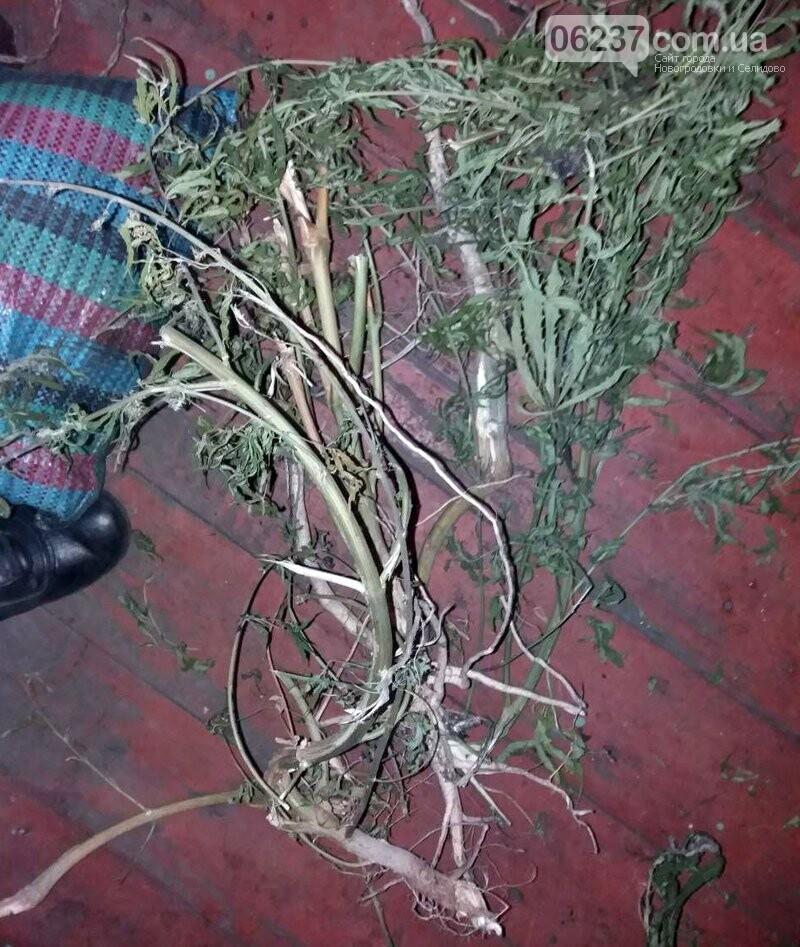 Селидівські правоохоронці, приїхавши за викликом на сімейну сварку, знайшли «наркотичну схованку» дебошира, фото-4
