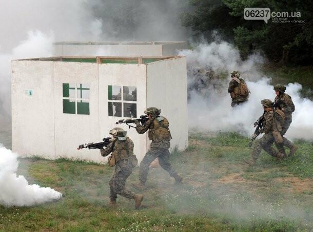 Совместные учения с НАТО и не только: где и как будут тренироваться украинские бойцы в 2018 году, фото-2