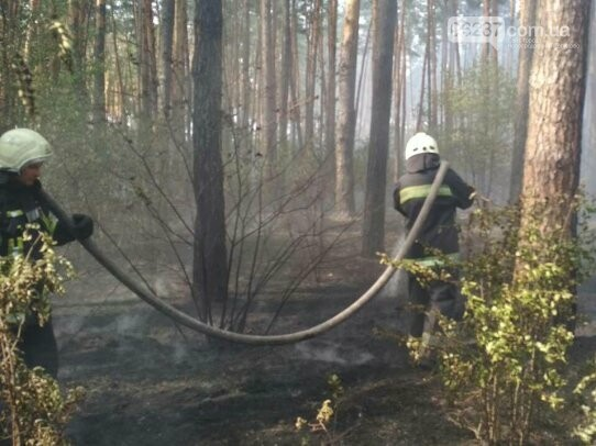 В Деснянском районе Киева горит травяной настил на площади 3 га, фото-1