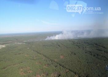 В Запорожской области пожар уничтожил около 94 га пшеницы, фото-1
