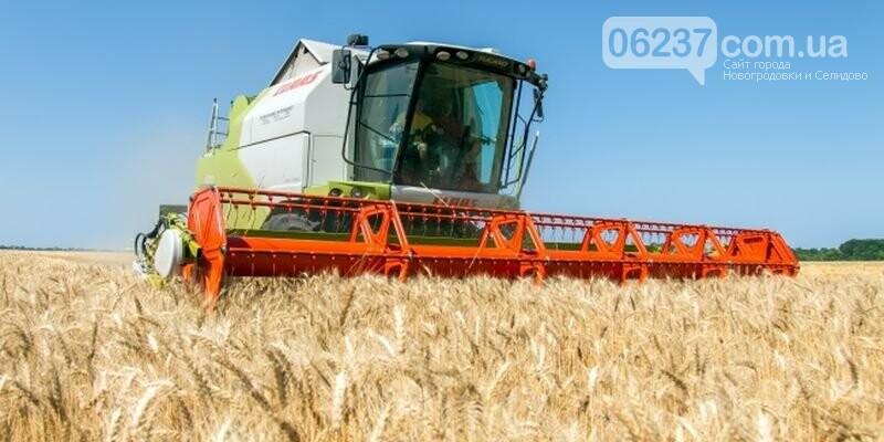 Украинцам для внутреннего потребления достаточно пятой части урожая пшеницы - Шеремета, фото-1
