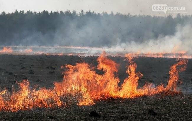 В Украине 10-13 августа будет преобладать чрезвычайный (5 класса) уровень пожарной опасности, фото-1