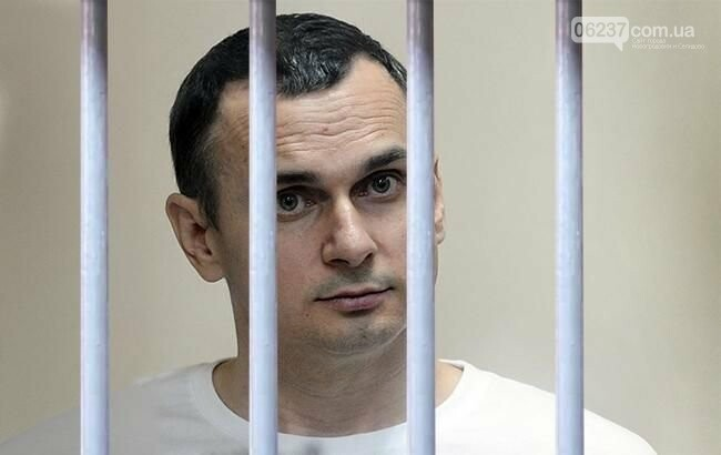 Комиссия РФ по вопросам помилования не приняла ходатайства по Сенцову, фото-1
