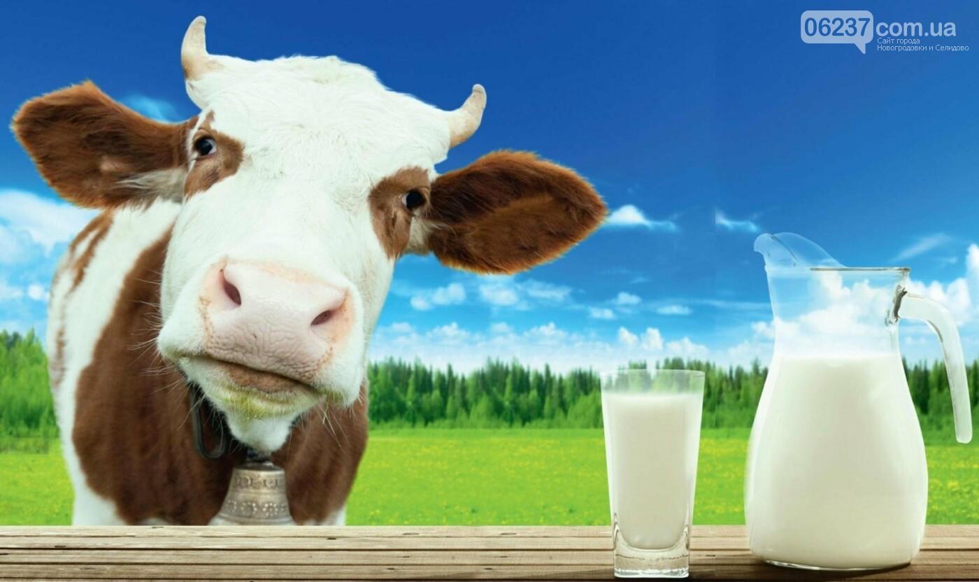Ученые выяснили, что молоко на завтрак снижает уровень глюкозы и повышает сытость, фото-1