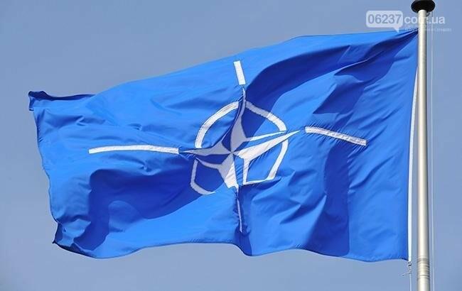 В Грузии начались военные учения НАТО при участии Украины, фото-1