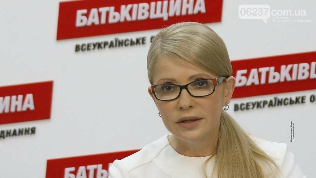 Новый экономический курс Украины. Тимошенко обнародовала текст, фото-1