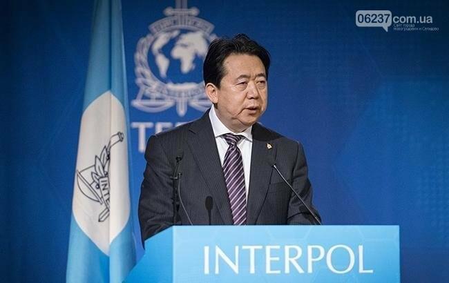 Китай официально объявил о подозрении экс-главы Интерпола в коррупции, фото-1
