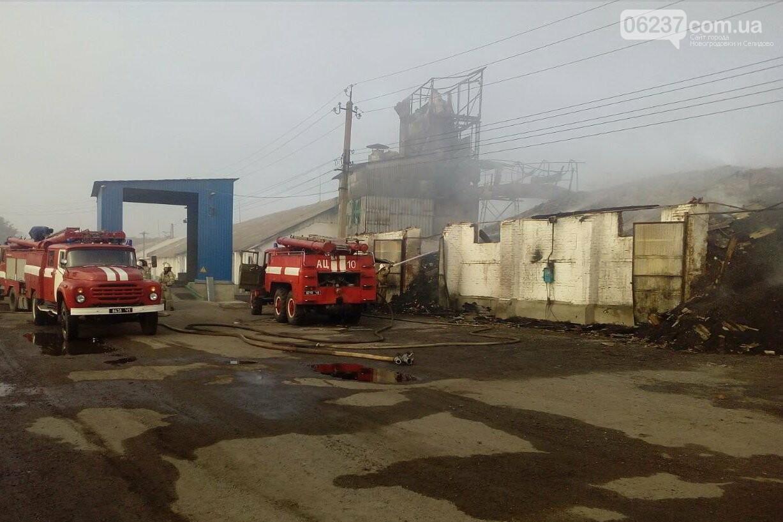 Под Харьковом горят склады с зерном, огонь не могут потушить с ночи. Опубликованы фото, фото-1