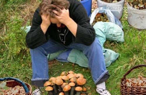 На Харьковщине дерево убило грибника, фото-2