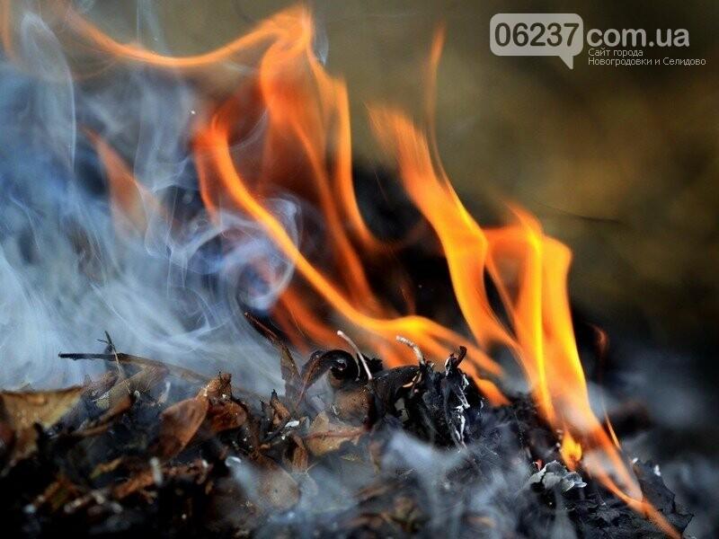 В Днепре наказывают граждан, сжигающих опавшую листву, фото-1