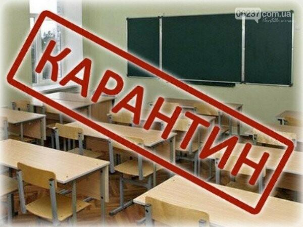 С сегодняшнего дня все школы Новогродовки закрыты на карантин, фото-1
