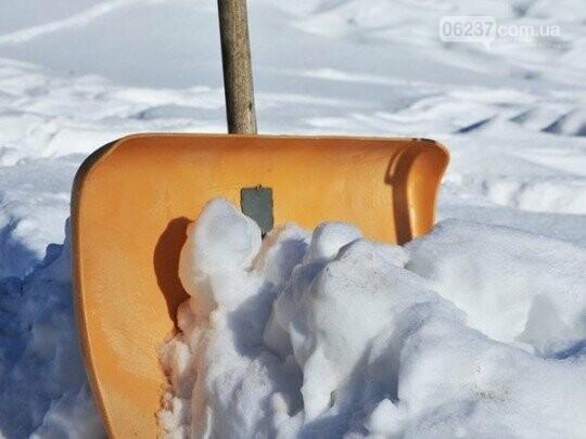 В России учителей выгнали на мороз собирать снег в мешки, фото-1