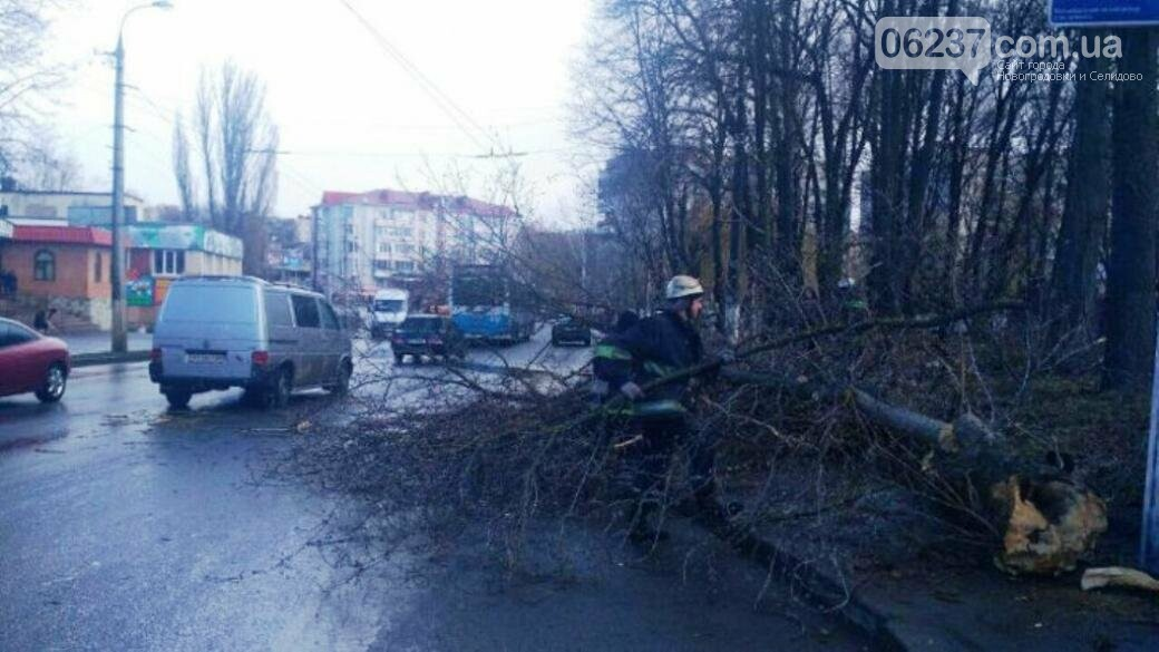 В Виннице упавшее дерево убило 11-летнюю девочку, фото-1