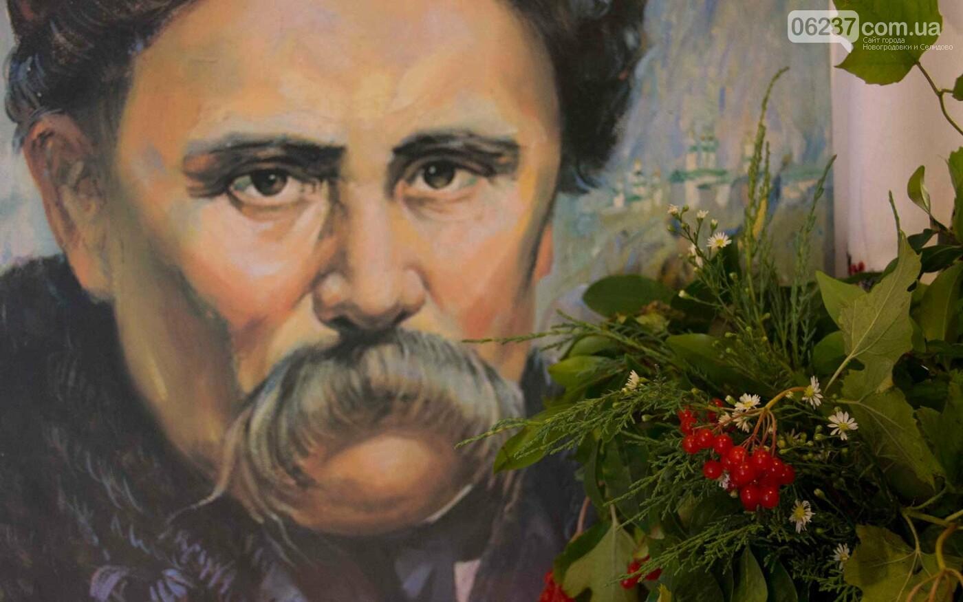 Виставка репродукцій картин Тараса Шевченка запрацювала у Новогродівці, фото-1