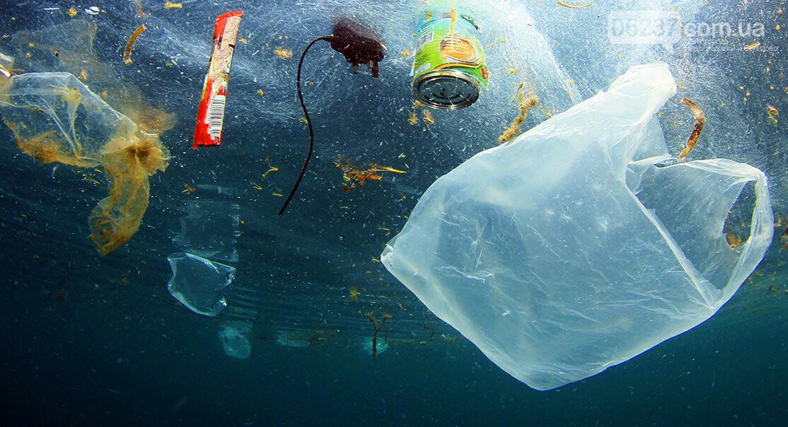 Европарламент запретил одноразовую пластиковую посуду, фото-2