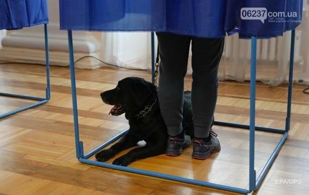 Полиция рассказала о нарушениях на выборах на 15:30, фото-1