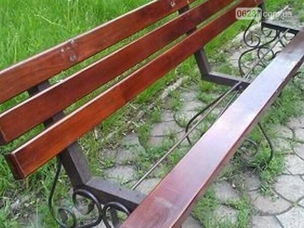 В Новогродовке орудуют неизвестные вандалы, фото-1