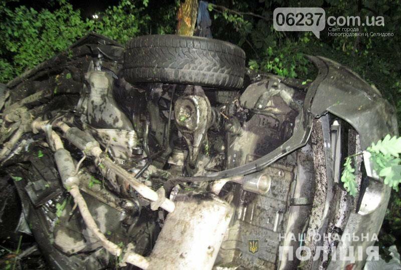Дети - в реанимации, взрослые погибли: в Лиманском районе жители Донецка попали в ДТП, фото-1