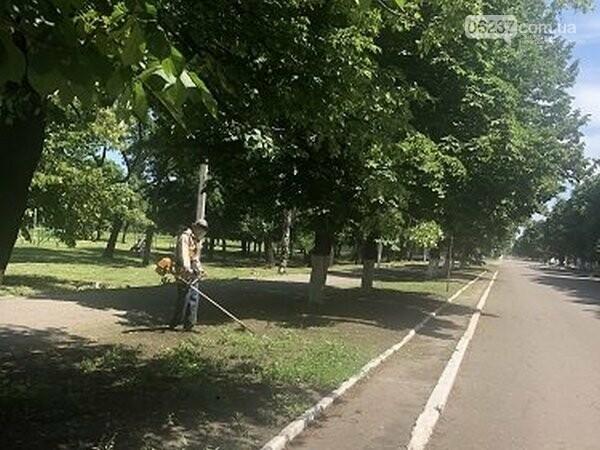 В Новогродовке продолжаются работы по благоустройству города, фото-1