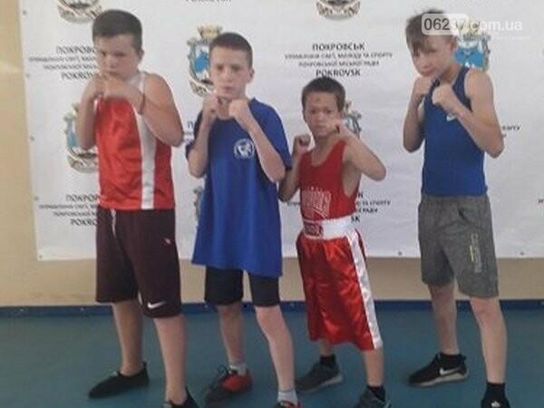 Новогродовские боксеры продемонстрировали свое мастерство на Региональном турнире, фото-1