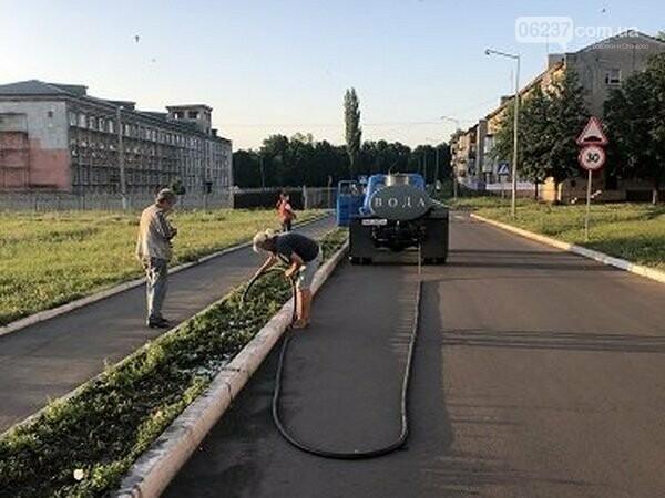 В Новогродовке поливают зеленые насаждения, чтобы спасти их от жары, фото-1