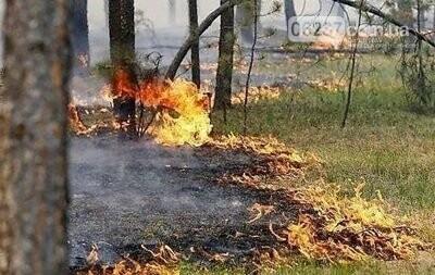 ГСЧС объявила чрезвычайный уровень пожароопасности, фото-1