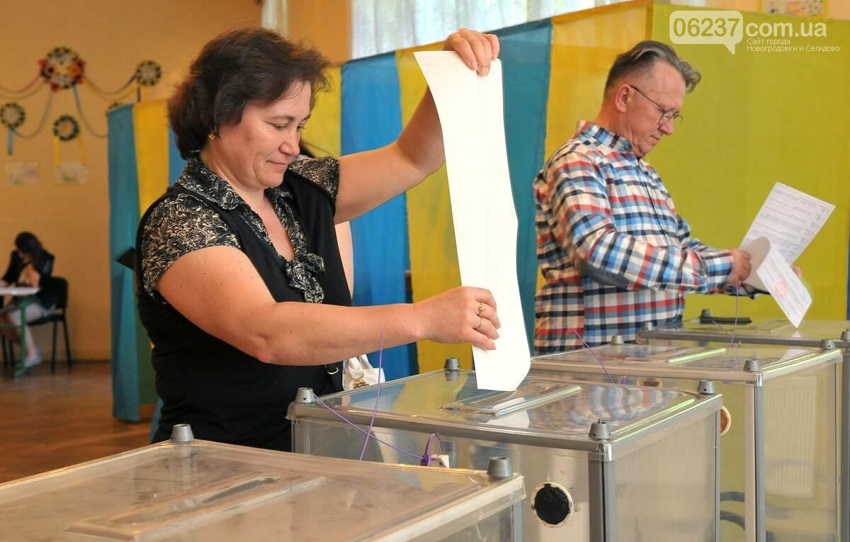 Обезьяна на участке, кастрюля-сейф и съеденный бюллетень: курьезные происшествия на выборах, фото-1