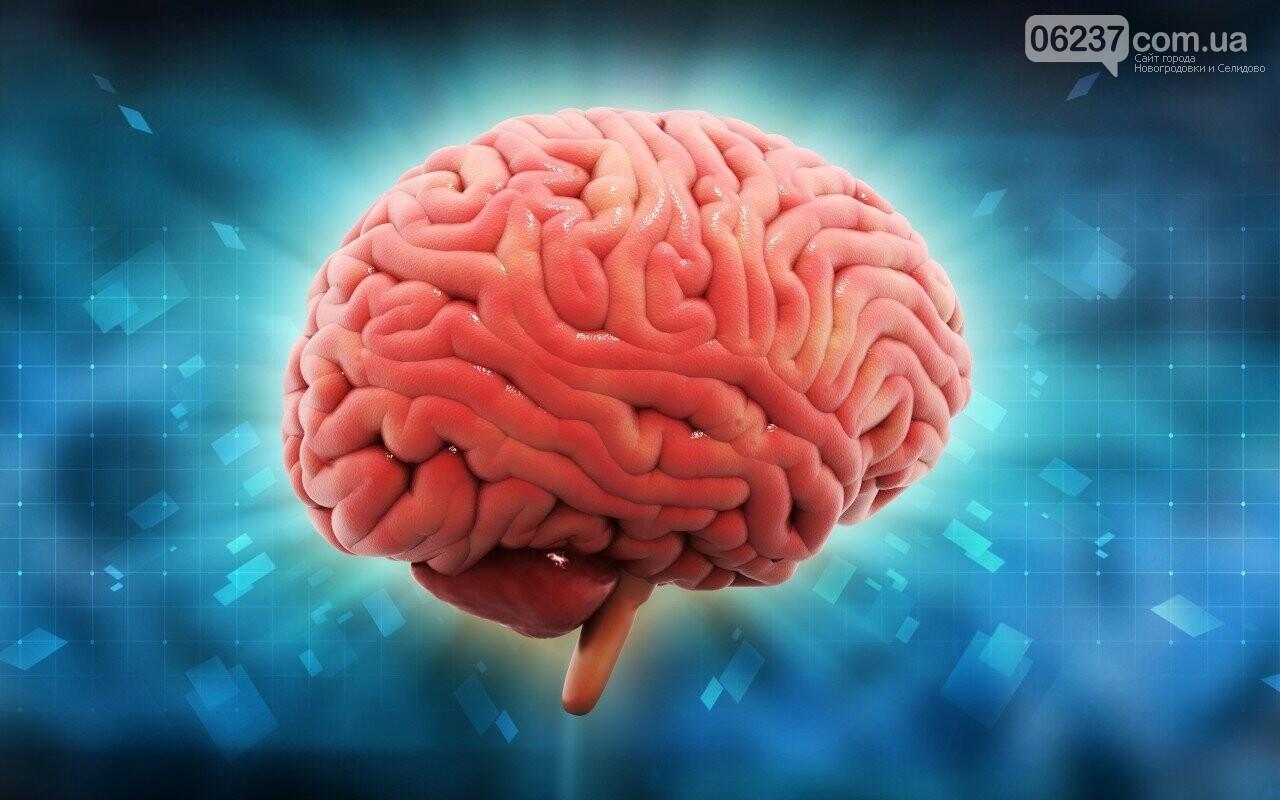Найден простой способ замедлить старение мозга, фото-1