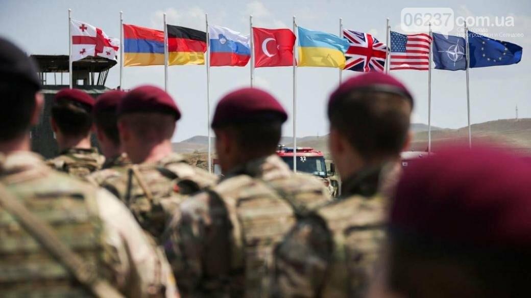 По принципам НАТО. В Украине появится новая система в сфере обороны, фото-1