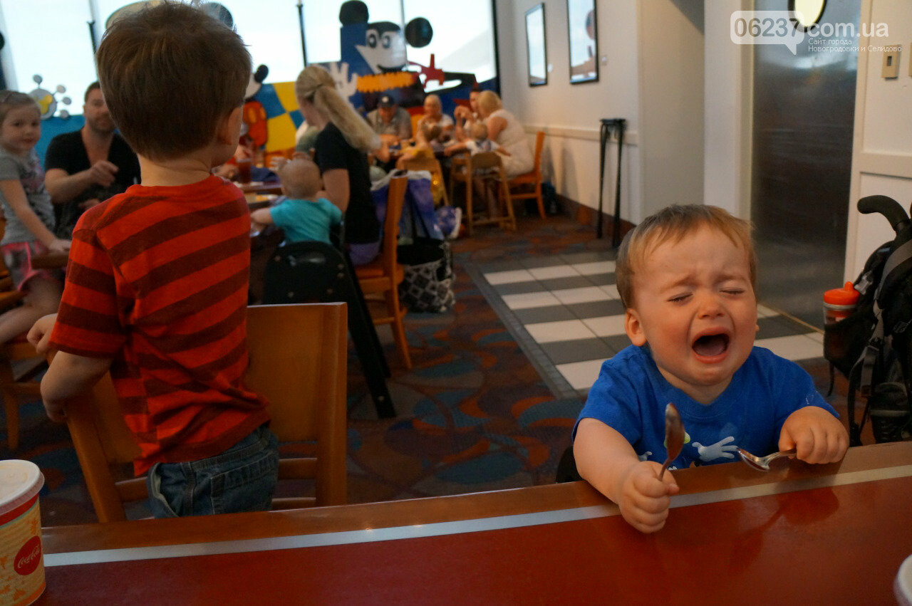 Мясо не положено? Жители Донецка возмущены питанием в детских садах, фото-1