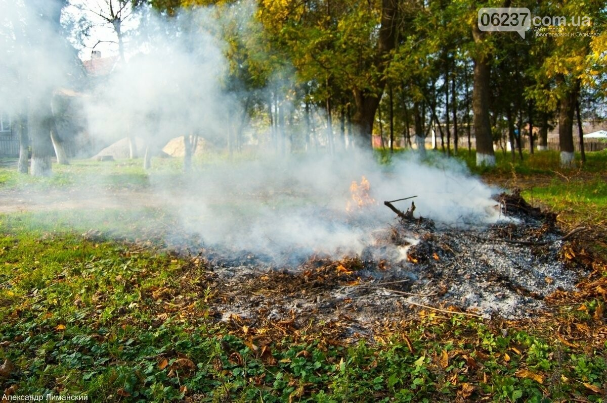 Как в Селидово борются со сжиганием листьев, фото-1