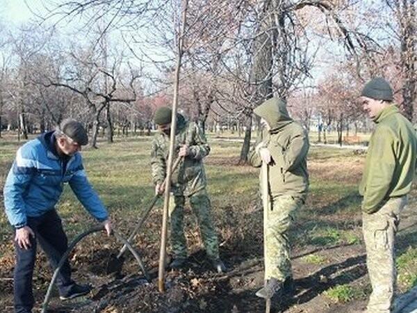 Военнослужащие высадили новые деревья в городском парке Новогродовки, фото-1