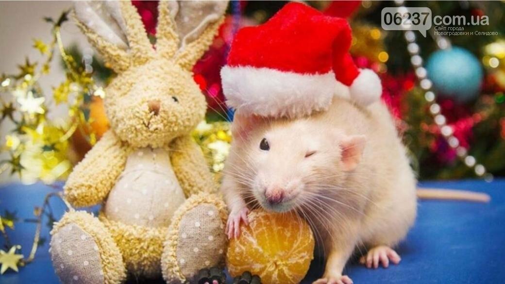 Астрологи рассказали, как правильно встретить год Белой Крысы, фото-1