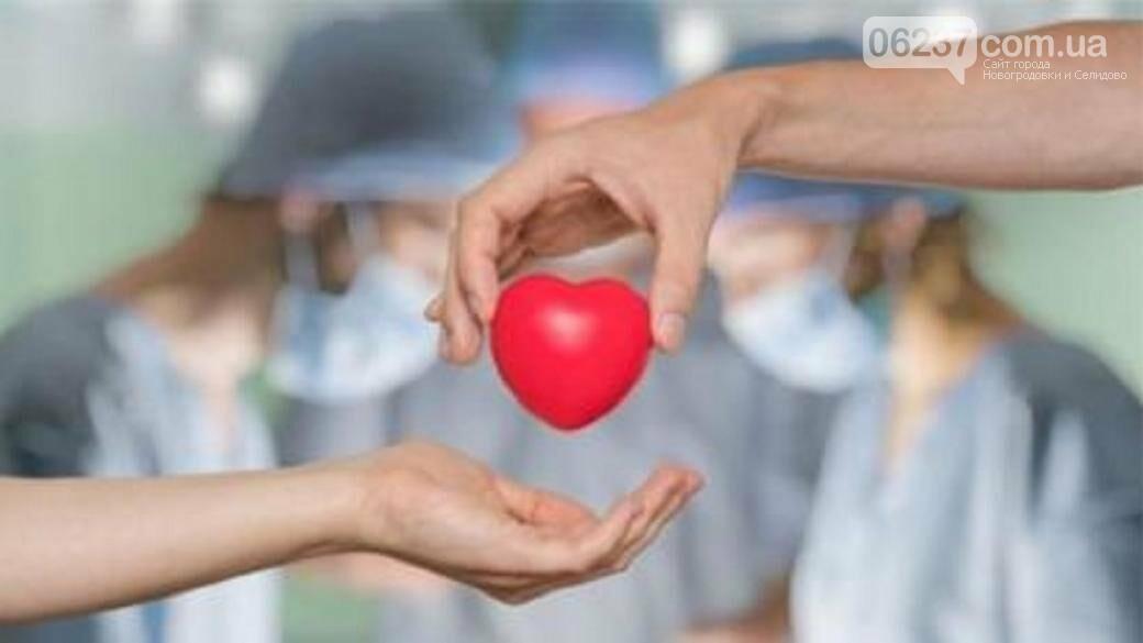 Кабмин утвердил тарифы на услуги трансплантации, фото-1