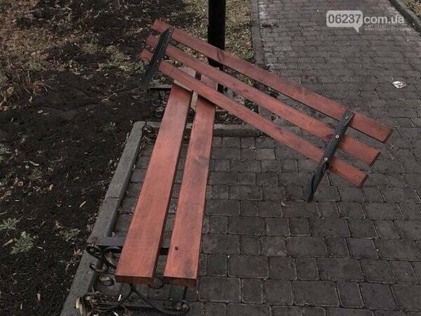 В Новогродовке вандалы сводят на нет все усилия по благоустройству города, фото-1