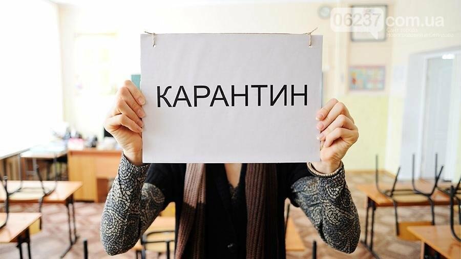 Все учебные заведения Селидово, Горняка и Украинска закрывают на карантин, фото-1