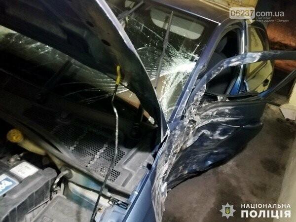 Ночью в Новогродовке автомобиль врезался в дерево, фото-1