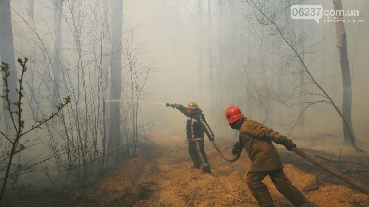 В Чернобыльской зоне полностью потушили пожар, фото-1