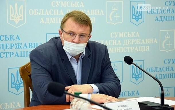 Зеленский объявил выговор главе Сумской области, фото-1
